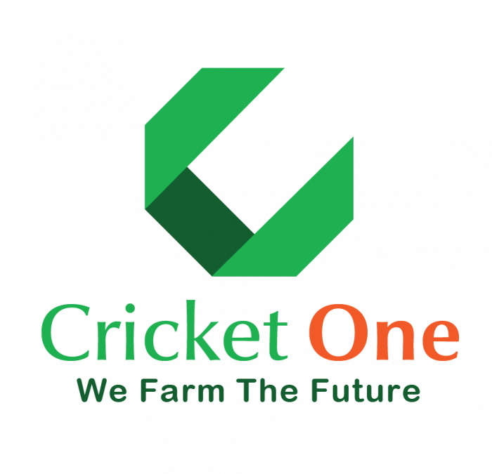 Cricket One